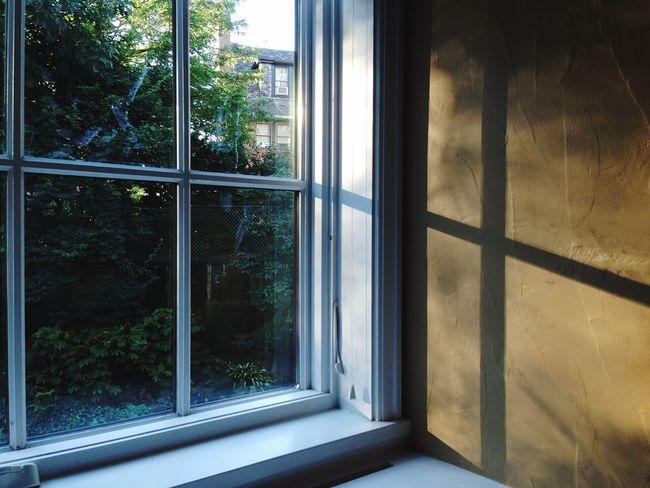 Open Edit Morning Window Peaceful Sunrise Market Bestsellers August 2016 Bestsellers