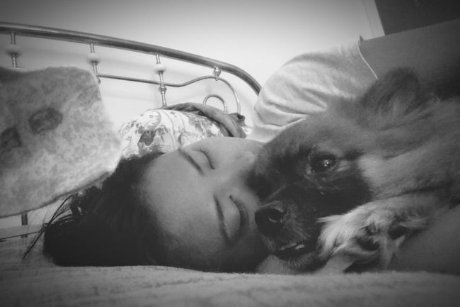 What I Value Family, and that includes my dogs. Family Mo & Bruno My Dogs Mutts Dogs Black & White Selfportrait Lazy Days Rest