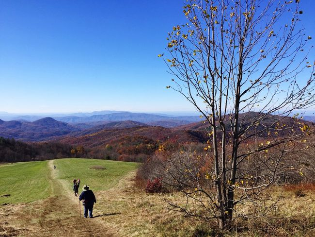 People And Places. People Walking Hiking Appalachian Trail Max Patch North Carolina Rear View Clear Sky Full Length Tranquil Scene Mountain Range Landscape Tree Bare Tree Autumn Blue Valley Non-urban Scene Day Countryside Getting Away From It All Nature Scenics