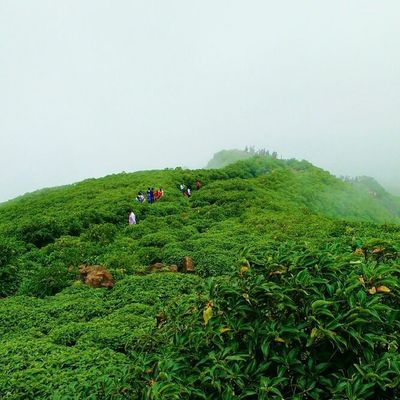 Some paths may not be clear , may not be easy , but you have to walk through only to realize your strength , and to enjoy the beauty nature bistows in the end. Nature Mountain Climbing Trekking greenery landscape amazing fog rain raindrops anjanery nasik nashik nashikgram devlali deolali clouds skyporn photooftheday life motivational quotes maharashtra india @maharashtra_ig @nashikgram @natgeo