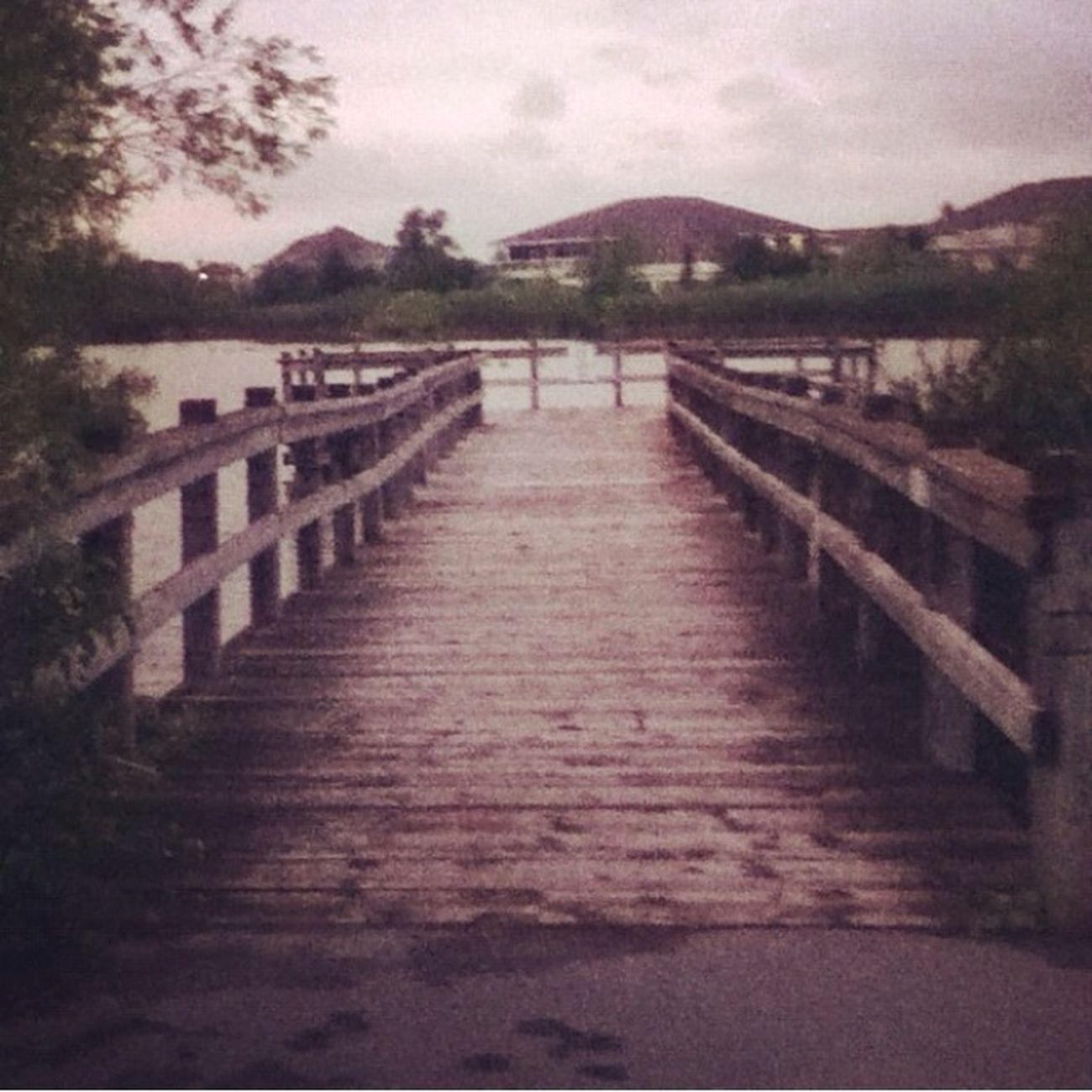 build your own bridges. Summer 2013