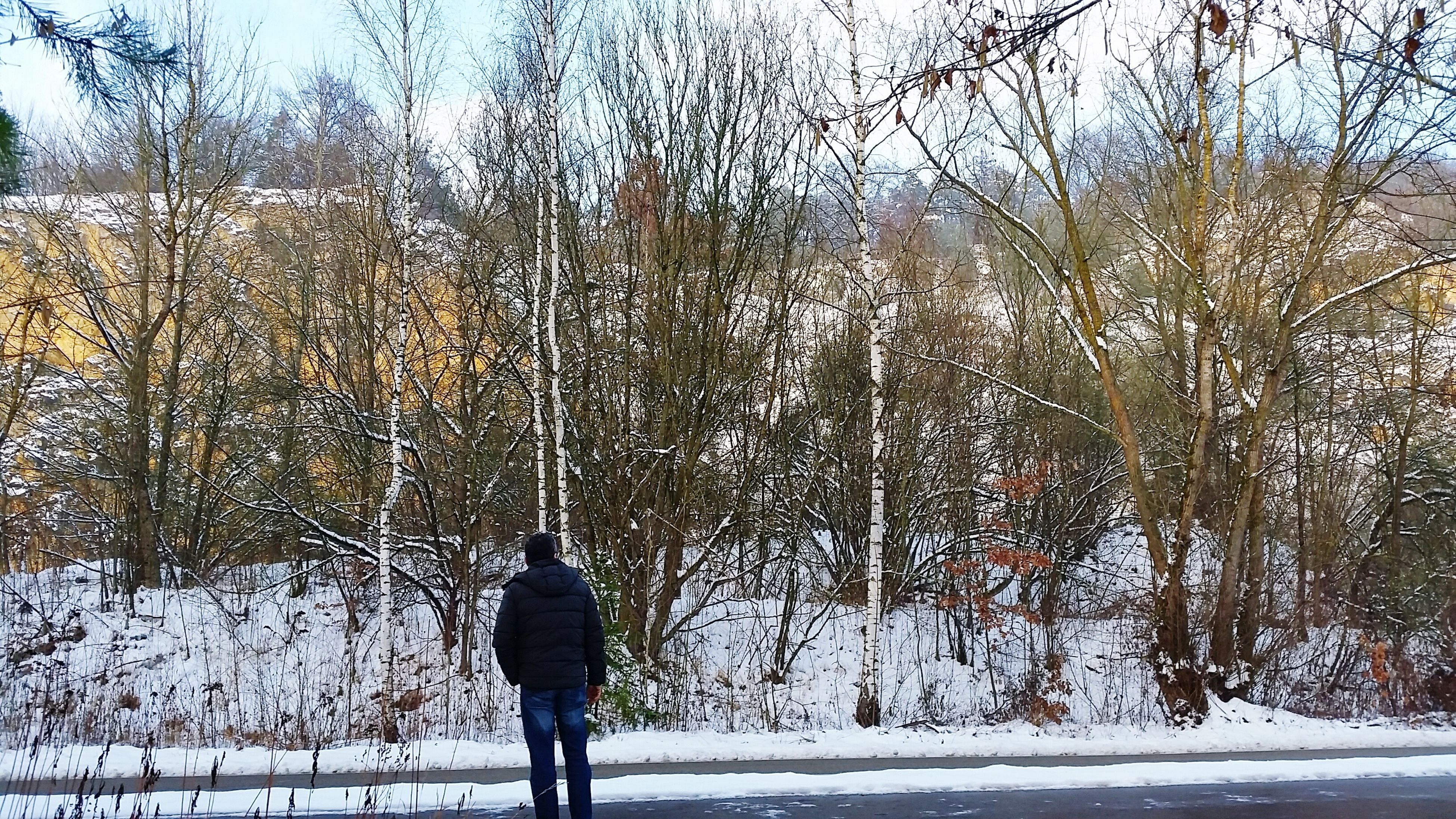 cold temperature, winter, snow, season, weather, tree, lifestyles, bare tree, covering, frozen, rear view, standing, nature, leisure activity, branch, warm clothing, outdoors, tranquility