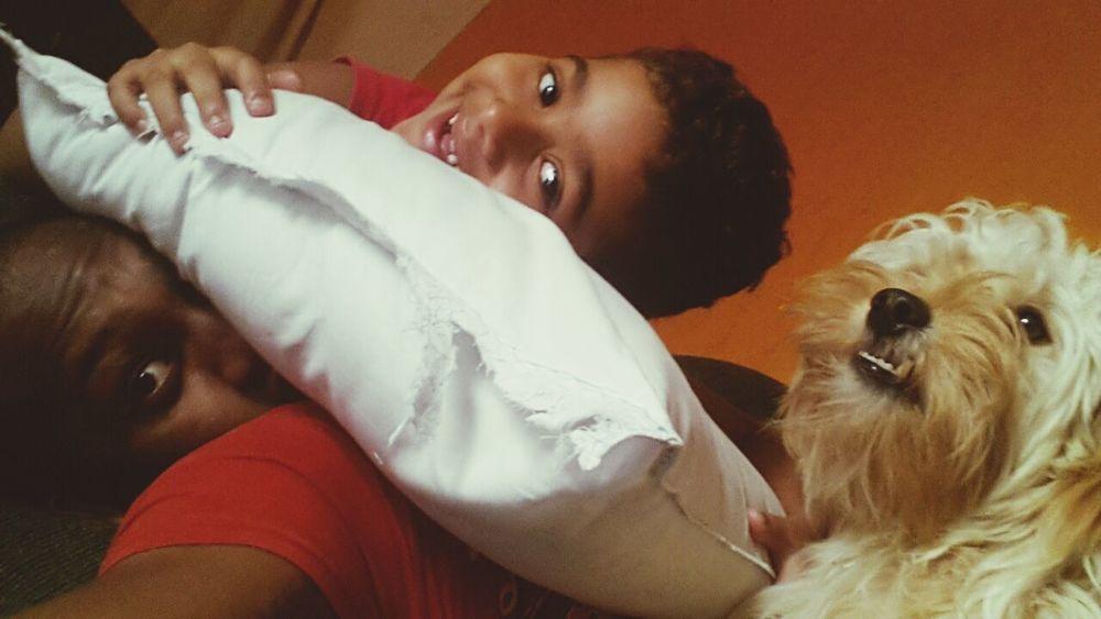 Behappy:) Good Morning! Ilovedogs
