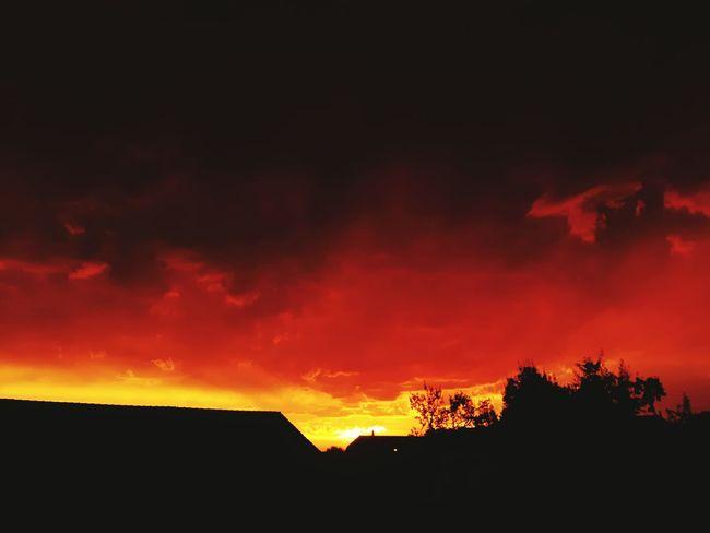 YOLO ✌ First Eyeem Photo Skyporn Schweiz Outdoors❤ Sommer My Dream Sky Naturelovers Sommerfeeling Sunset 43 Golden Moments