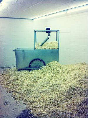 Popcorn at Sammlung Boros by Rosa