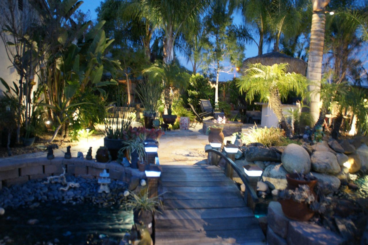 Ctai Pacific Greenscape Landscape Garden Outdoor Photography