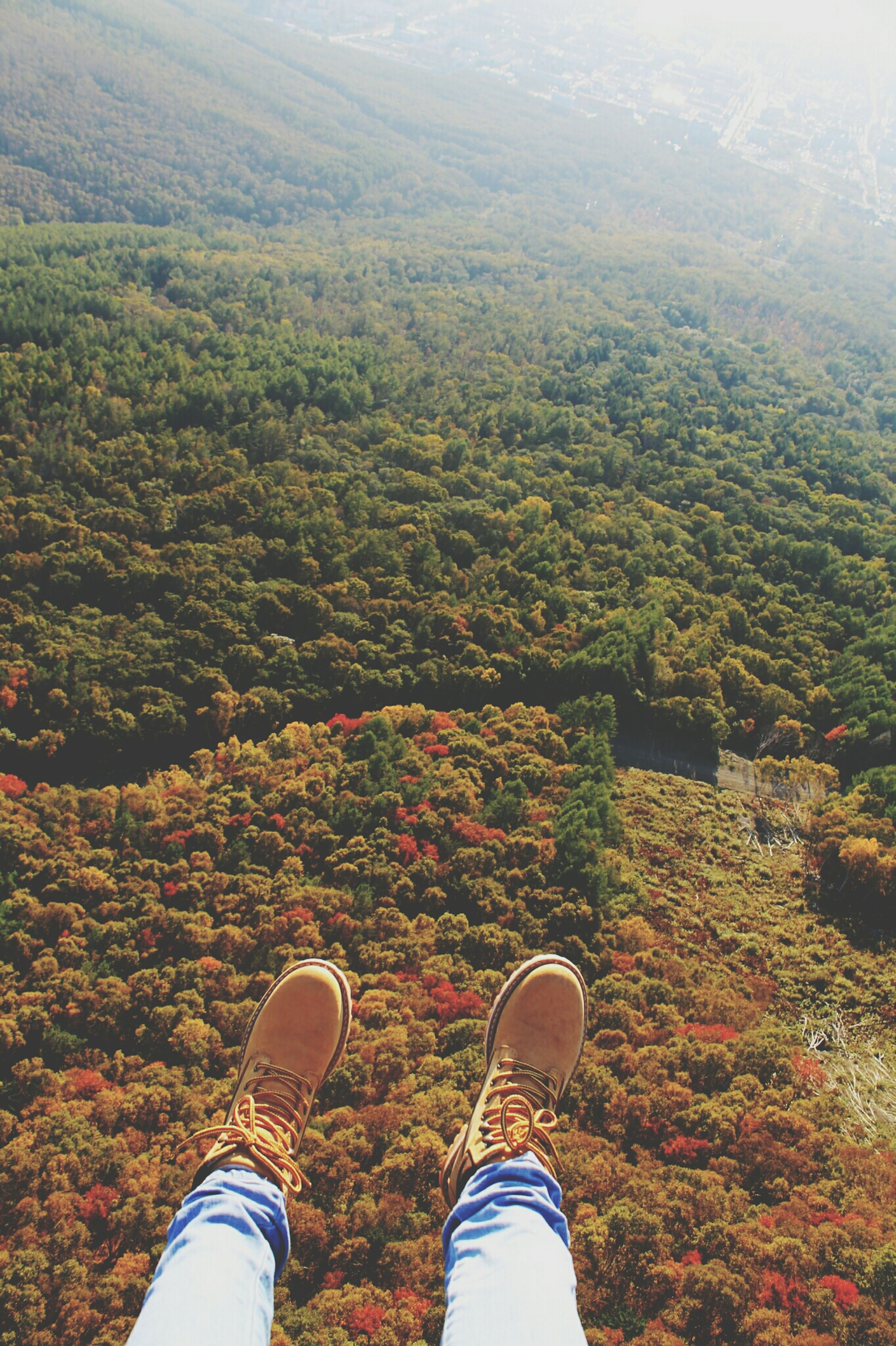 low section, personal perspective, person, shoe, field, grass, high angle view, nature, growth, unrecognizable person, plant, beauty in nature, part of, landscape, lifestyles, human foot, outdoors