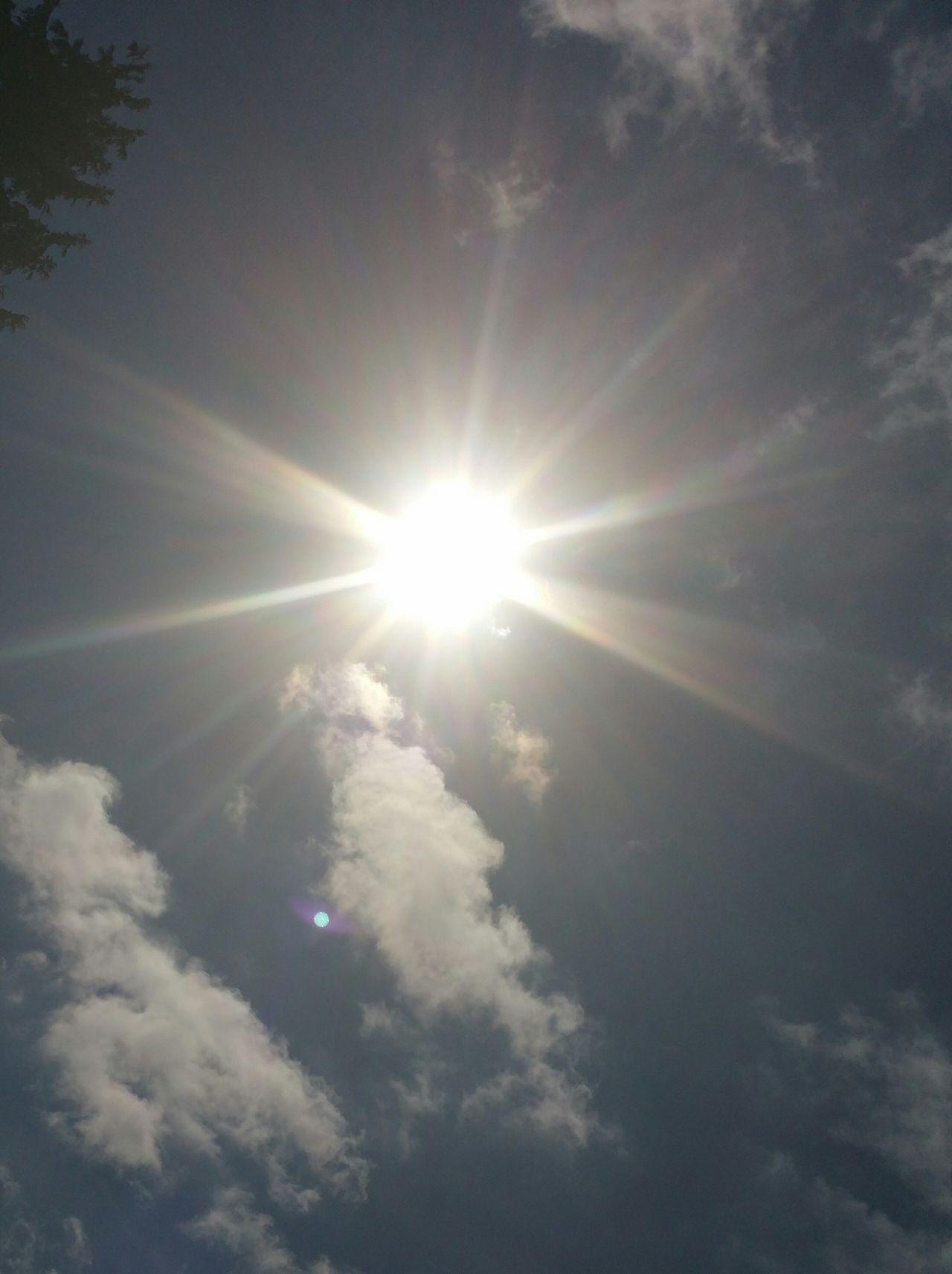 Taking Photos Sun shine