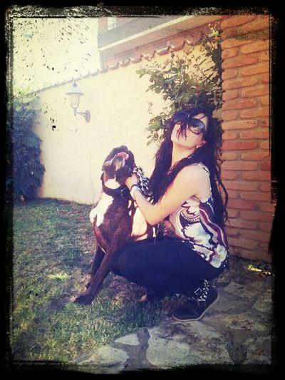 Boxer Dog Love Stessa Posizione