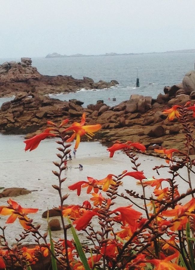 Fall Beauty Nature_collection Beautiful Nature Bretagnetourisme