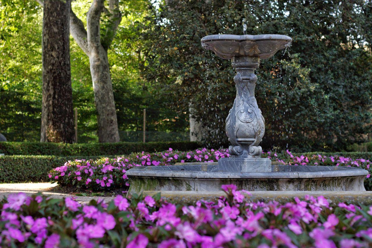 Parque de El Capricho en Madrid España Flower Nature Beauty In Nature Plant No People Tree Formal Garden Fountain Outdoors Day Flower Head Jorge L. Españoles Y Sus Fotos