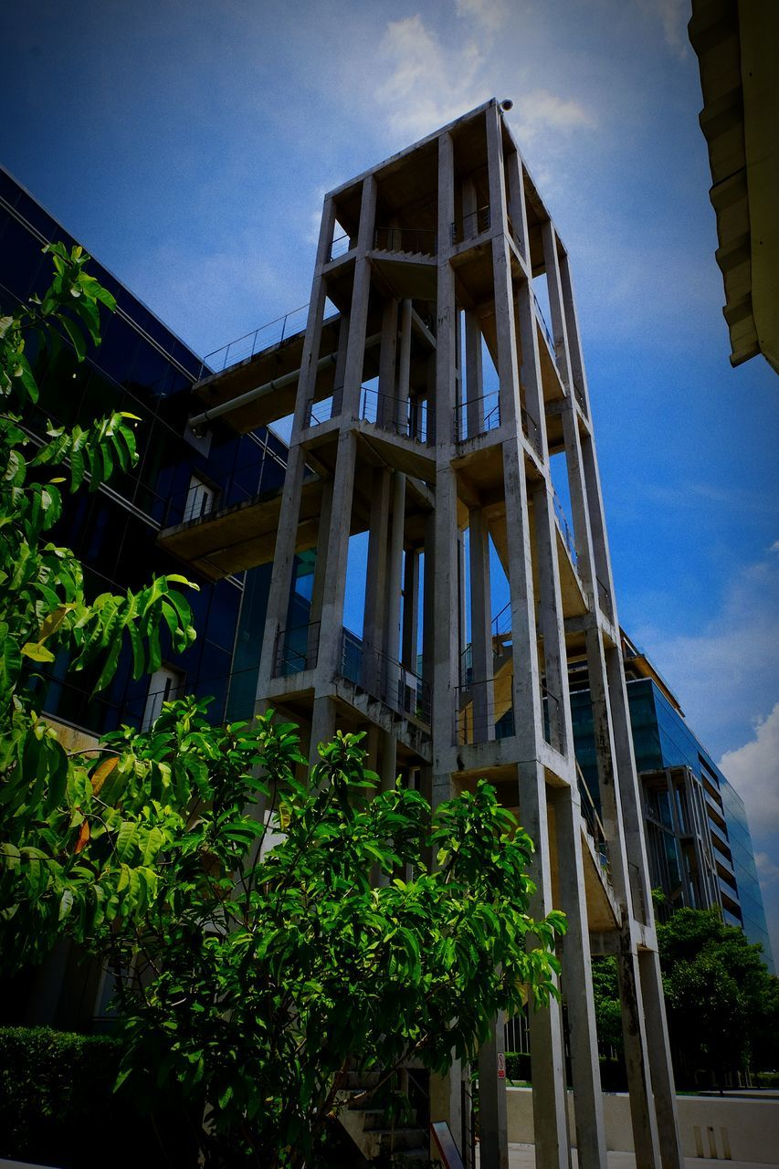 low angle view, architecture, built structure, building exterior, growth, day, sky, plant, outdoors, no people, tree, nature