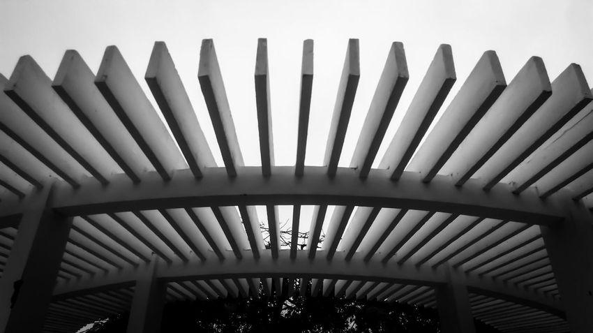 Park Black And White Black & White Monochrome Curves