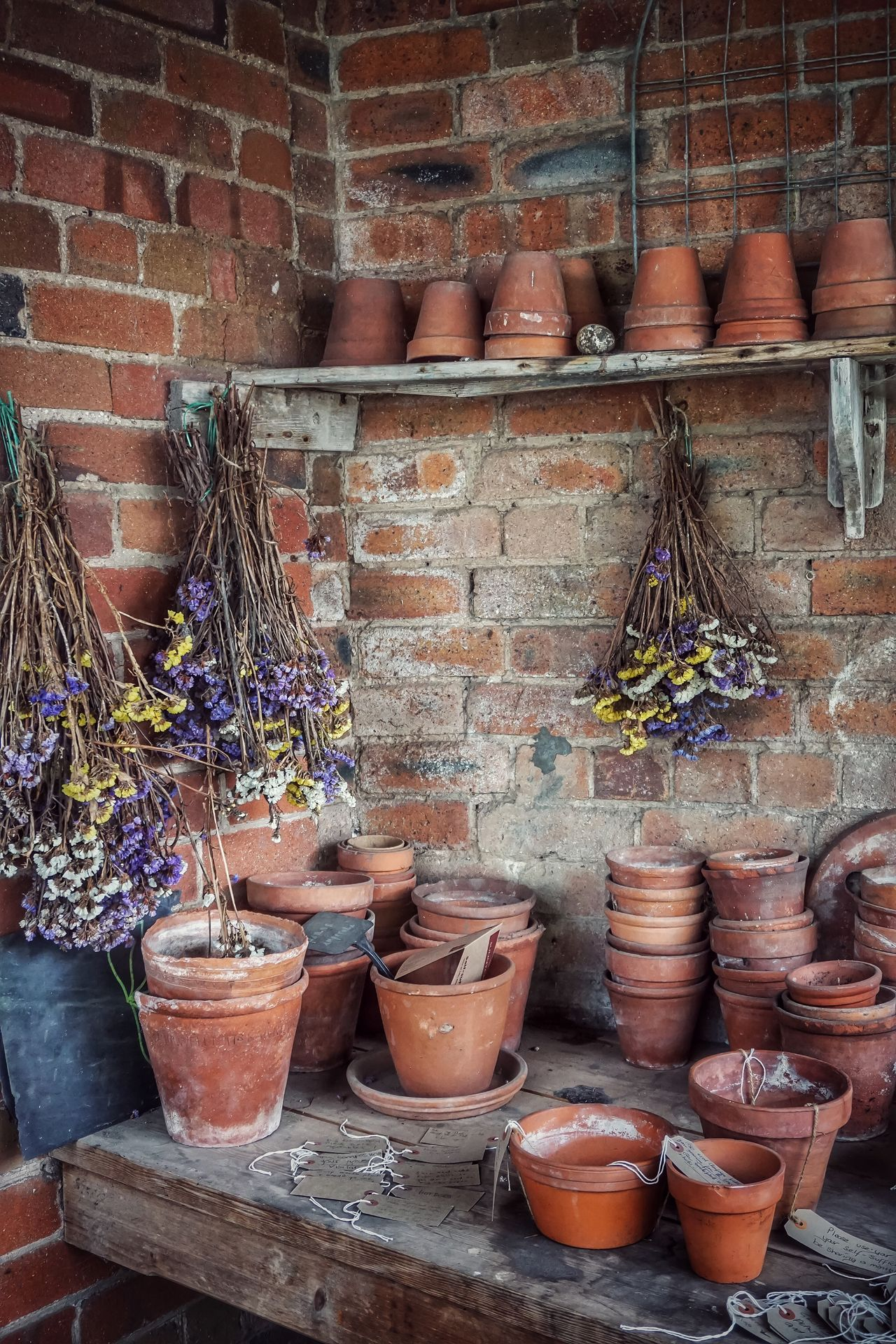 Potting Shed Potting Potted Plant Pottery Pot Flower Pot Flowerpot Terracotta Terracotta Pot Green House Greenhouse Glasshouse Brick Wall Plants Plant Planting Dried Flowers Tag Planting Seeds EyeEm Nature Lover EyeEm Gallery Eye4photography