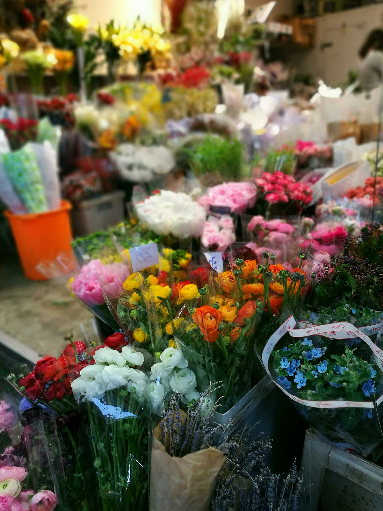 Multi Colored Flower Shop Bouquet Fragility Flower Market Street Photography On The Street Colours Of Life Street Wandering Around Aimlessly HuaweiP9 Leica Lens Art Is Everywhere Hong Kong EyeEm Gallery City Life EyeEm Best Shots Wanderlust Huaweiphotography Photograph Like Painting Wanderer Asian Cities Greenhouse Urban Photography Beauty In Nature