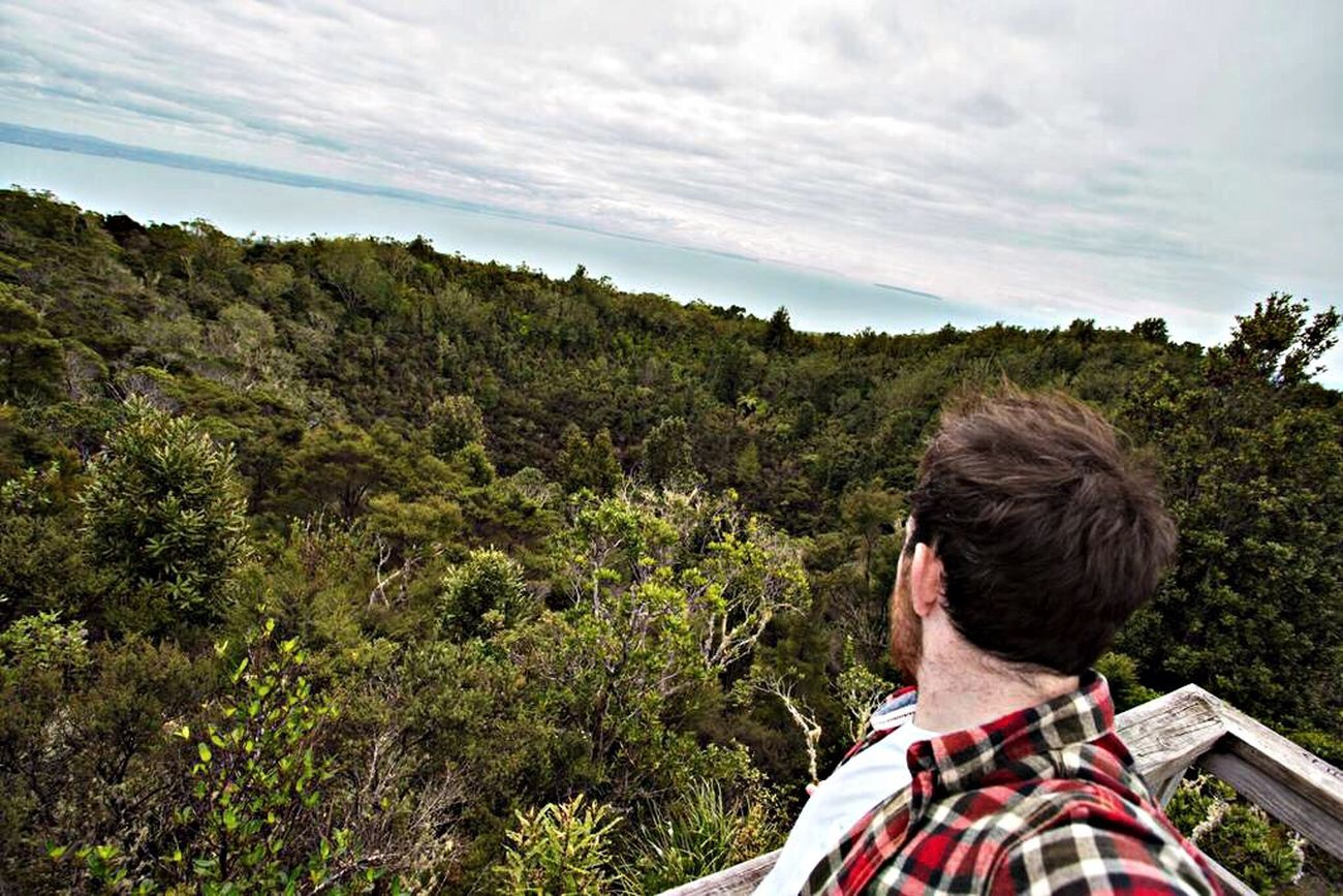 Looking out in the crater of an extinct volcano! Rangitoto Auckland Newzealand