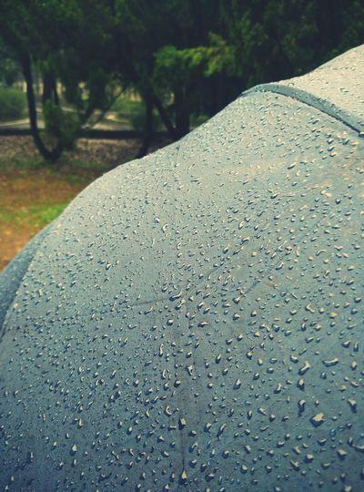 Raindrops Rainy Days Rain Drops Rain☔