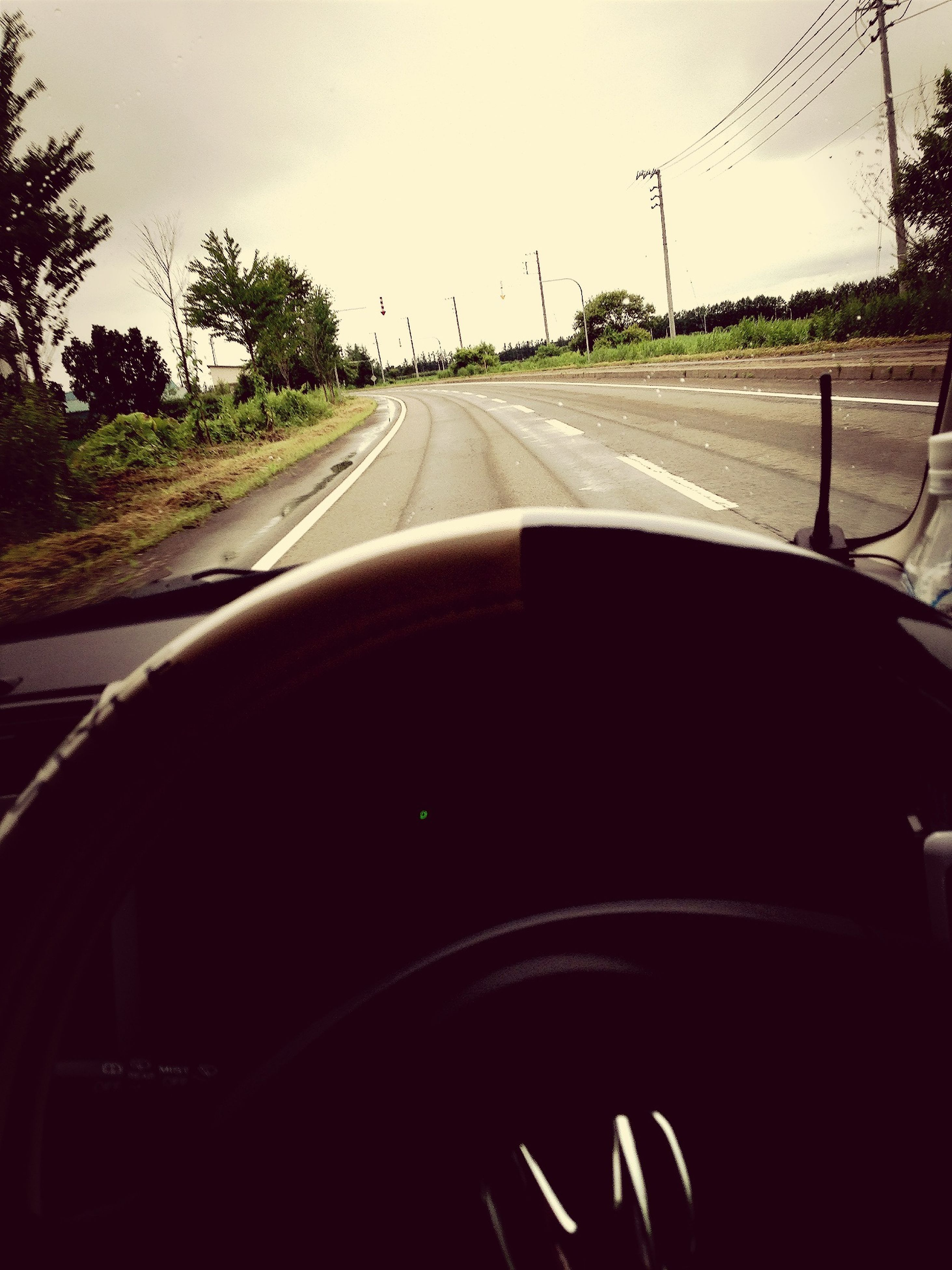transportation, mode of transport, car, land vehicle, road, windshield, vehicle interior, road marking, the way forward, car interior, travel, diminishing perspective, on the move, part of, cropped, car point of view, tree, journey, sky, vanishing point