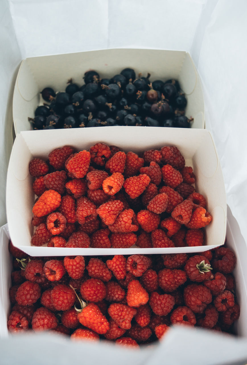 High Angle View Of Berries In Paper Bag