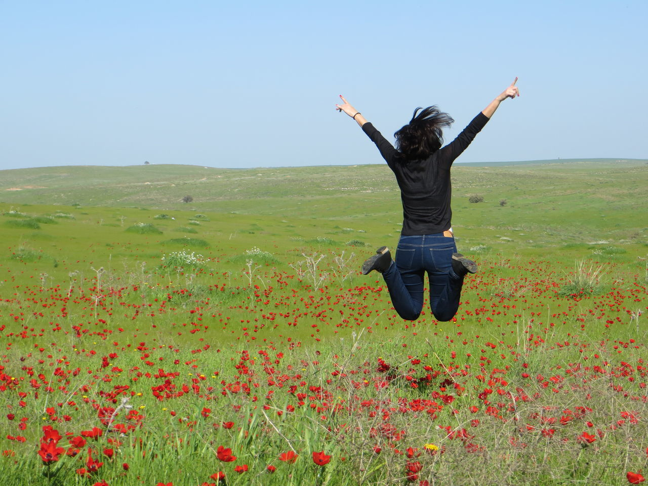 Adult Beauty In Nature Clear Sky Field Flower Freshness Full Length Grass Happiness Happiness Human Hand Jump Jumping Landscape Nature One Person Outdoors People Poppies  Poppy Poppy Fields Rear View Rural Scene Spring Flowers Springtime