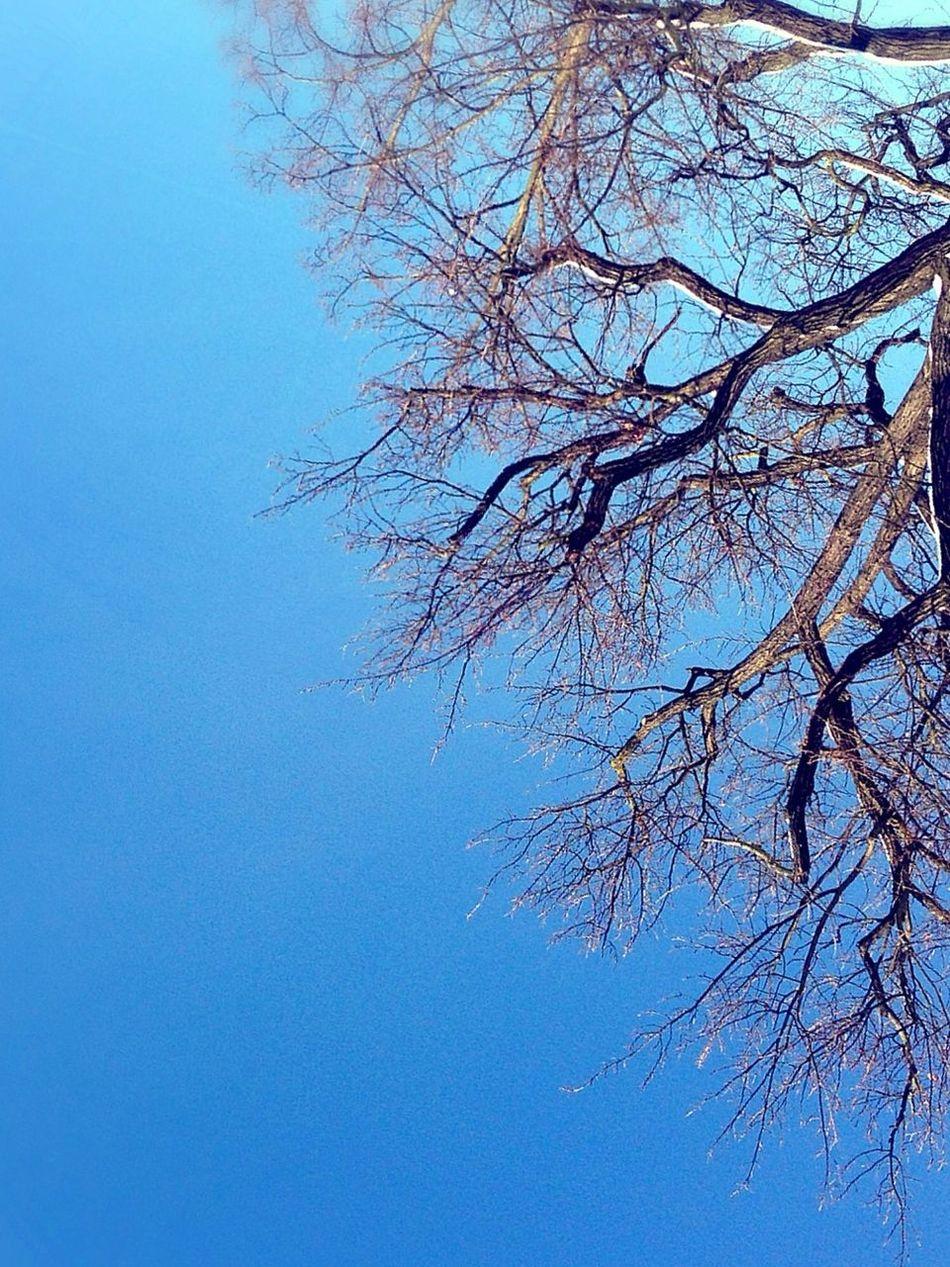 Good Morning Reach 4 The Sky