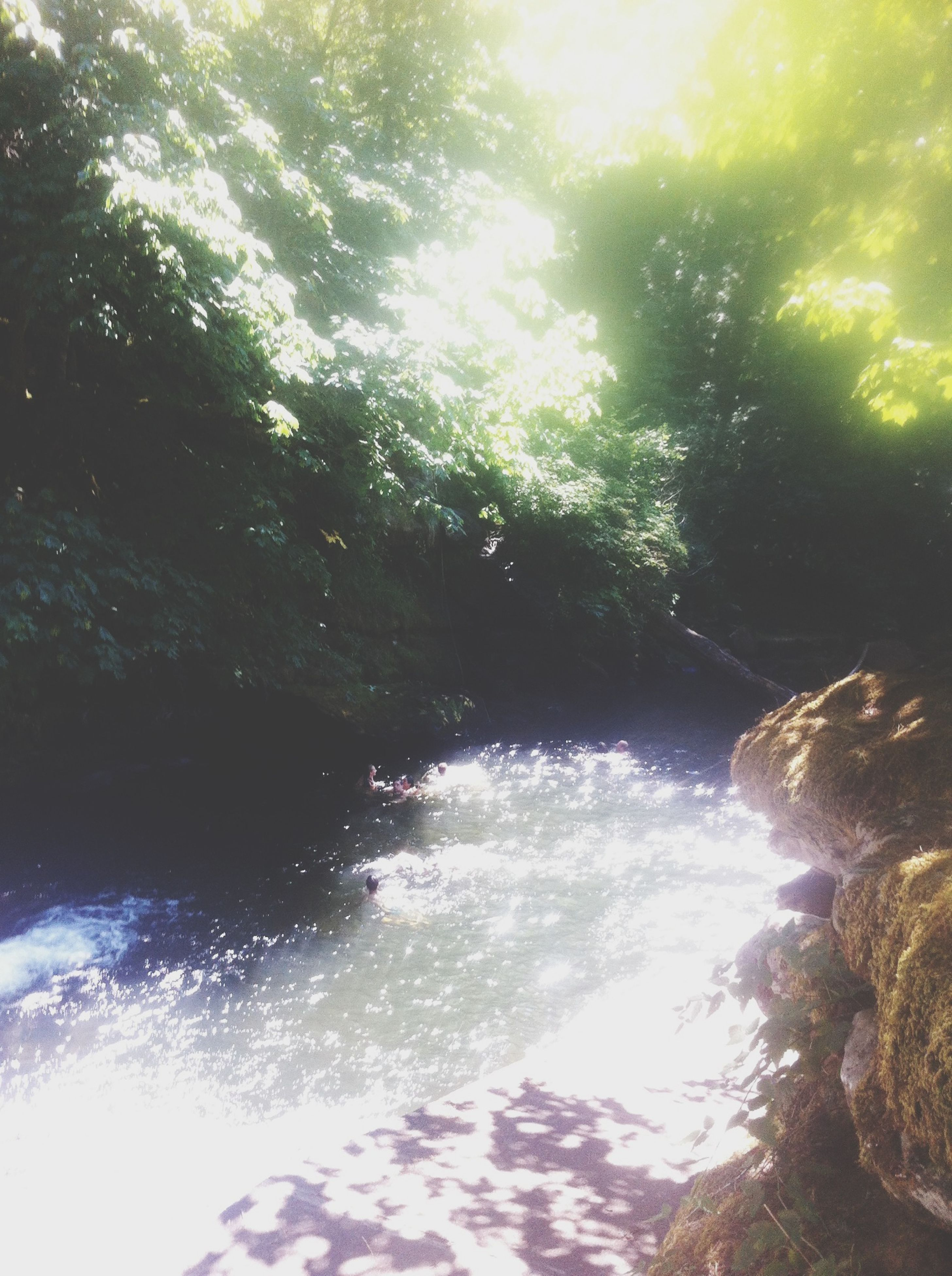 water, tree, sunlight, nature, beauty in nature, scenics, tranquility, motion, flowing water, rock - object, sunbeam, day, tranquil scene, outdoors, river, lens flare, forest, growth, idyllic, reflection