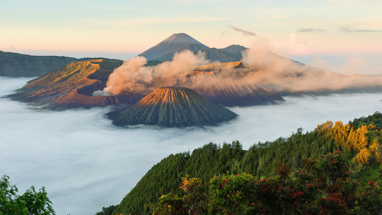 Beautiful morning view of Mount Bromo in Tengger Semeru National Park, East Java, Indonesia during beautiful sunrise with the valley full of sea cloud. Adventure Cloud - Sky Day East Fog Hiking INDONESIA Mountain Mountain View No People Outdoors Scenics Sky Smoke - Physical Structure Tree Volcano