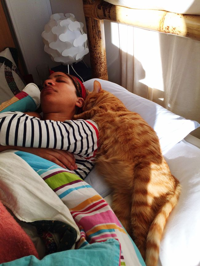 hi! check this out that's me hanging out relaxing taking photos of my wife sleeping with our cat Fripouille