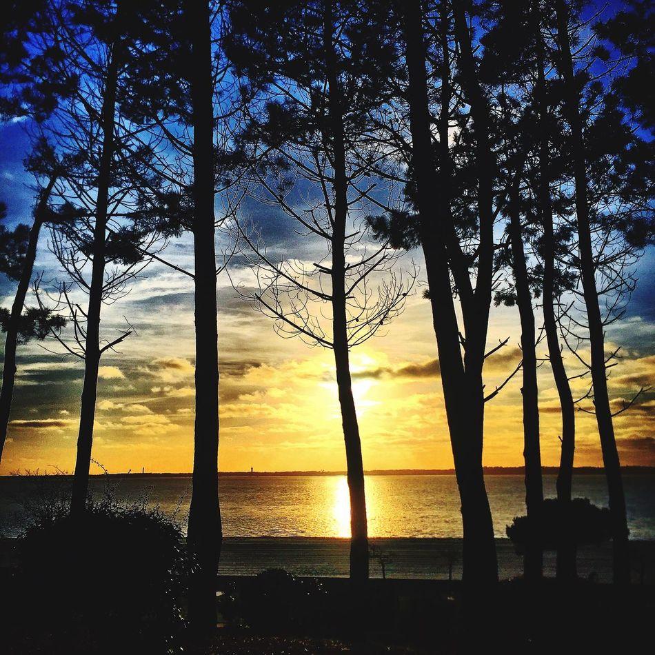 Being A Beach Bum Relaxing Enjoying The Sun Arcachon Hello World Followme Sunset And Clouds  Eye4photography  Sunshine Sunset