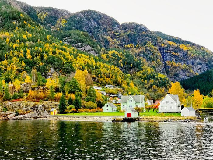 A beautiful village called Jondal Water Mountain Waterfront House Tree Jondal Jondal Beach Autumn Fall Autumn Colors Autumn Leaves Autumnbeauty Fall Beauty Fall Colors Bergen Norway