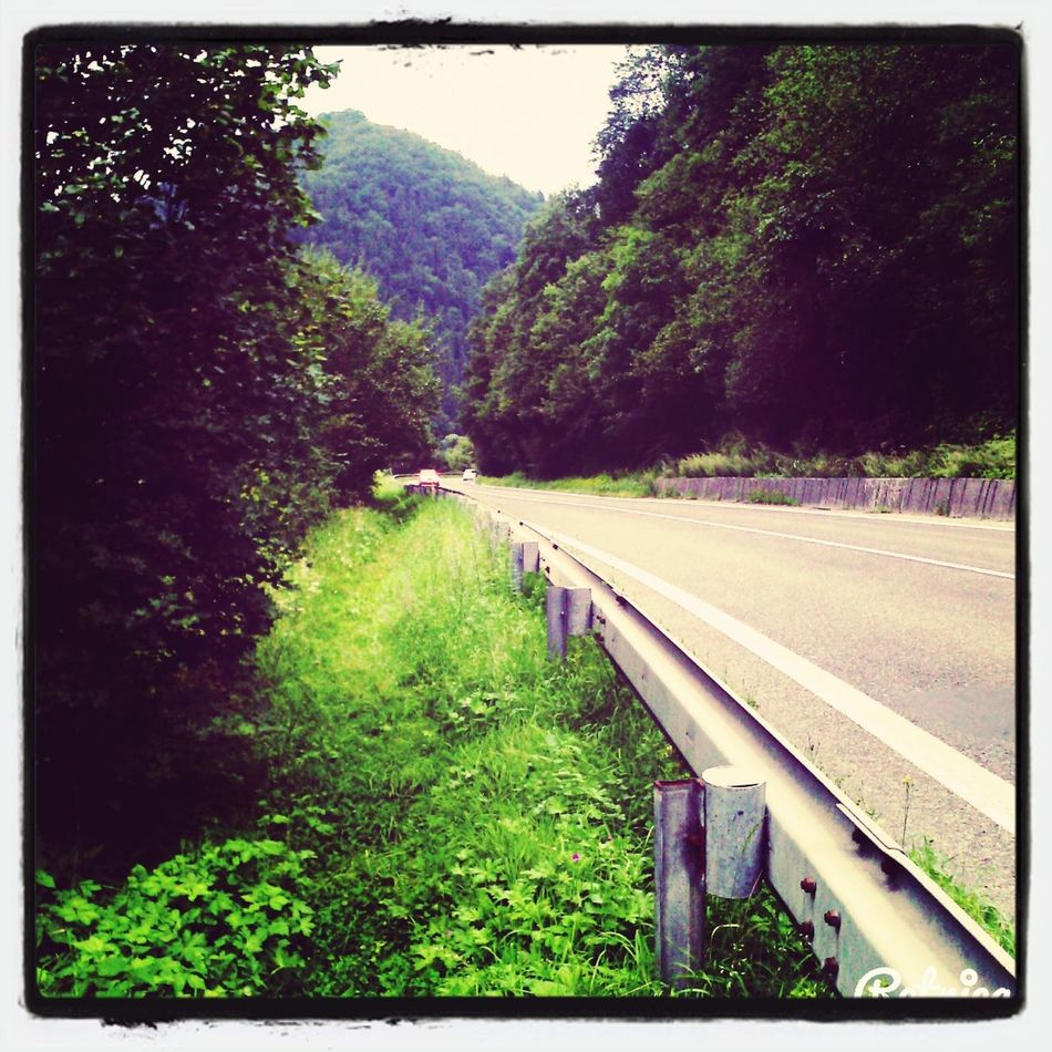 Nature. Cesta ako má byť. Summer Holiday ^^ Friends
