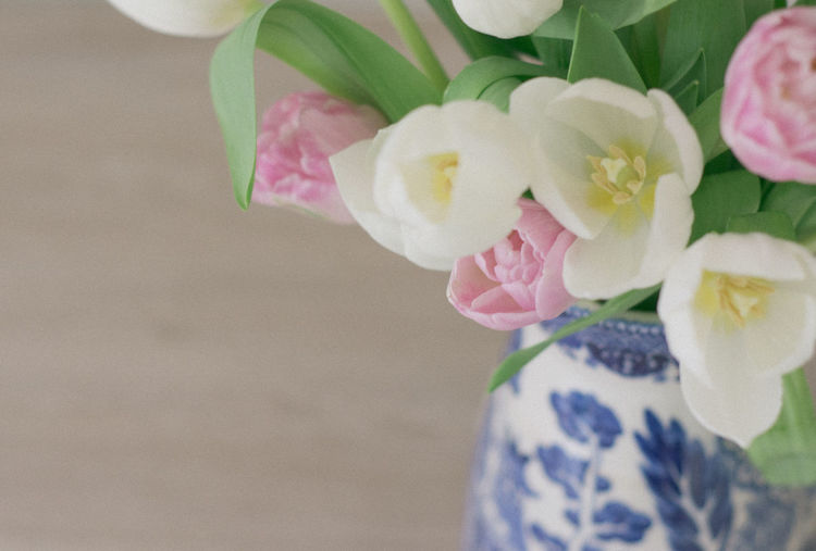 Close up of pink and white tulips in a vintage blue and white vase Feminine  Floral Arrangement Tulips Chinois Close-up Muted Colors No People Pink Tulips Vintage White Tulips