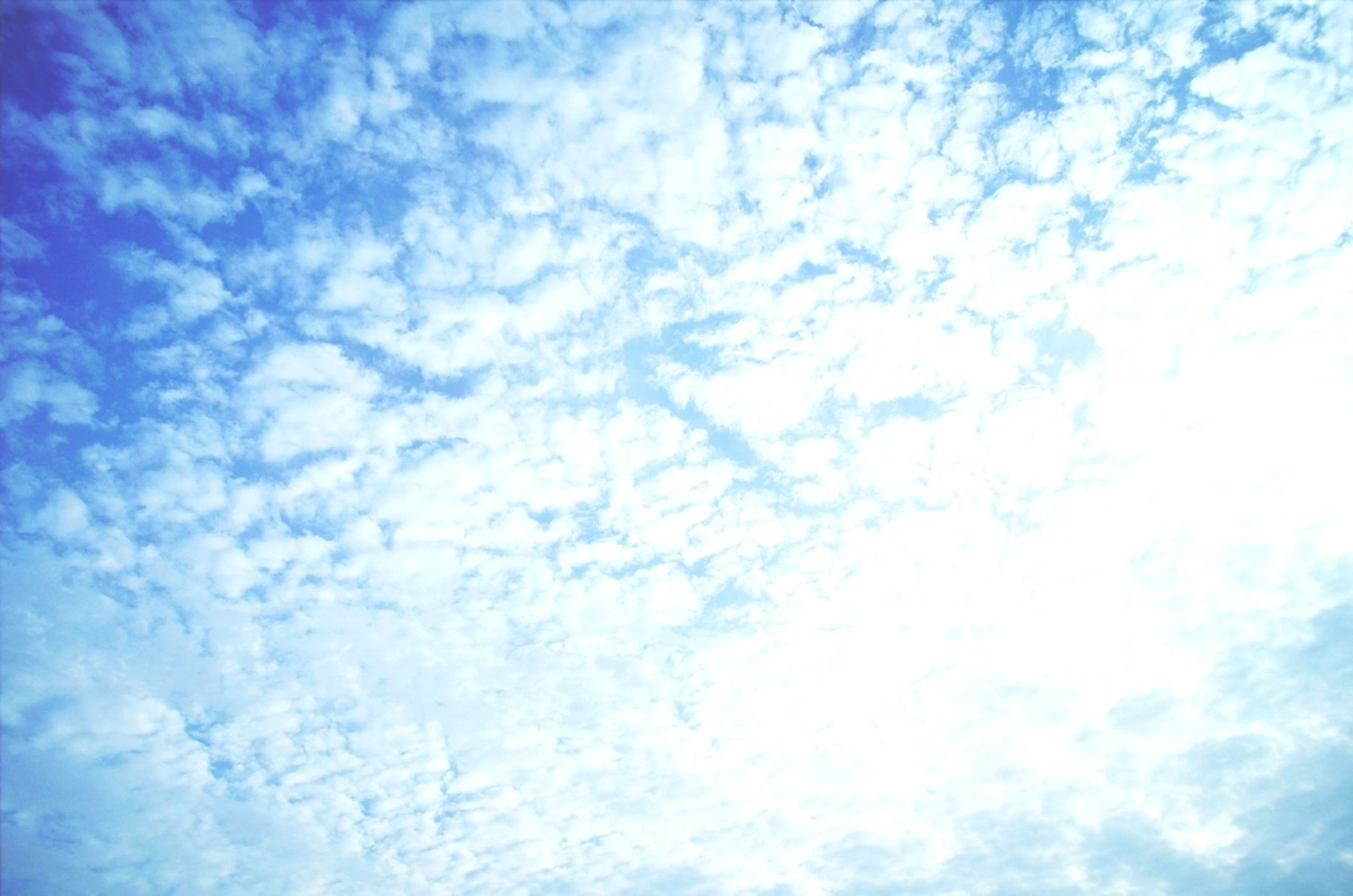 low angle view, sky, cloud - sky, blue, beauty in nature, backgrounds, tranquility, sky only, full frame, cloudy, nature, scenics, tranquil scene, cloud, cloudscape, white color, idyllic, outdoors, day, no people