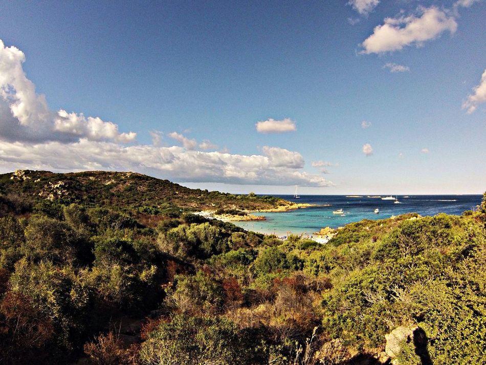 Spiaggia Del Principe Mare Estate2013 Sardegna