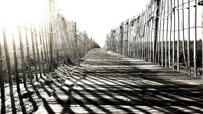 Beach Access Beach Walk Opme⛱ Pixlr Edit EyeEm Best Shots - Black + White EyeEm EyeEm Gallery Monochrome Photography Maine Photography 🌲 S6
