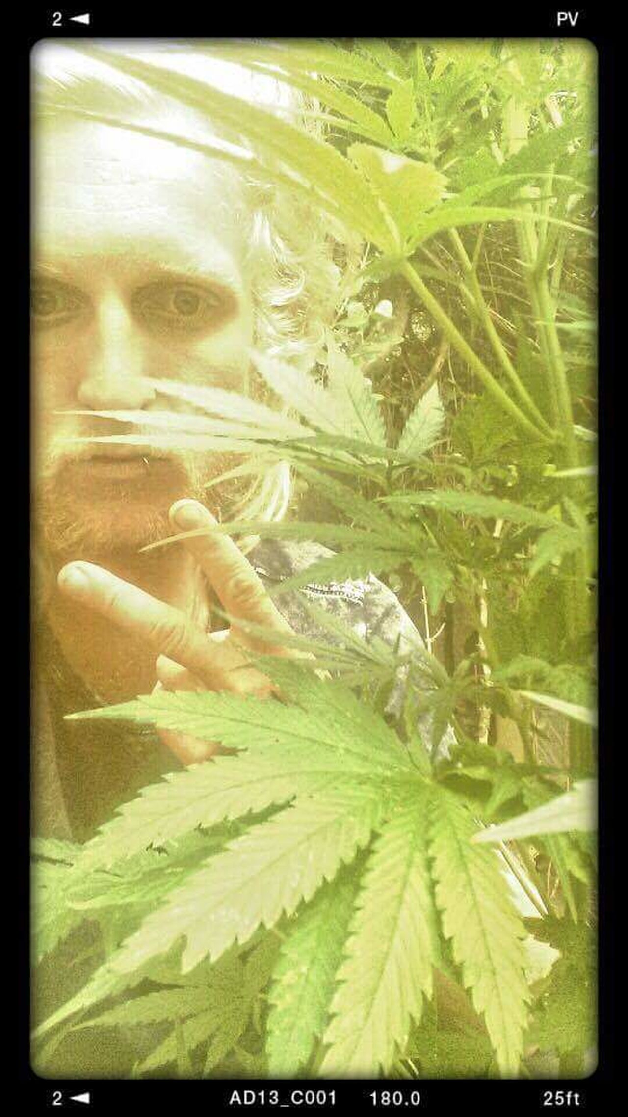 420 Smoker Photography Photooftheday Smokeweedeveryday Weed Buds❤ Faces Of EyeEm That's Me Self Portrait Photo Of The Day Hustling Enjoying Life CreativePhotographer Photoart Me Check This Out Androidography Selfie ✌ Professionalphotography Eye Em Best Shots Ridersonthestorm Letmetakeaselfie FacesOfEyeEm Relaxing Hello World