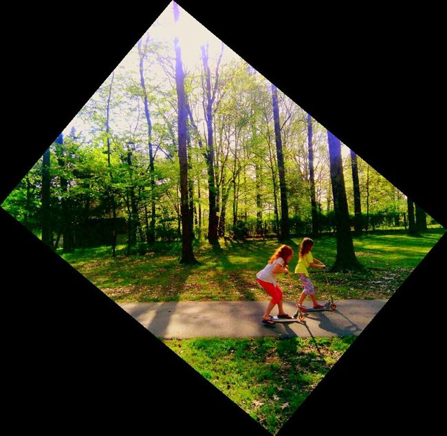 Kids at play Enjoying Life Sunshin Tree_collecti The Great Outdoo Sun And Silhouettes