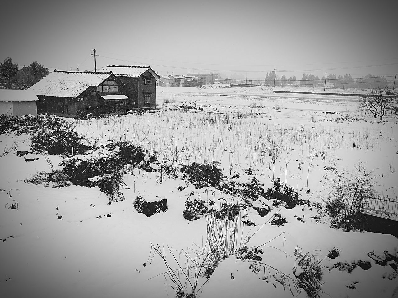 Japan Toyama Snowy District Snow The Country Rice Field White_and_black EyeEm Best Shots EyeEm Gallery EyeEm Nature Lover