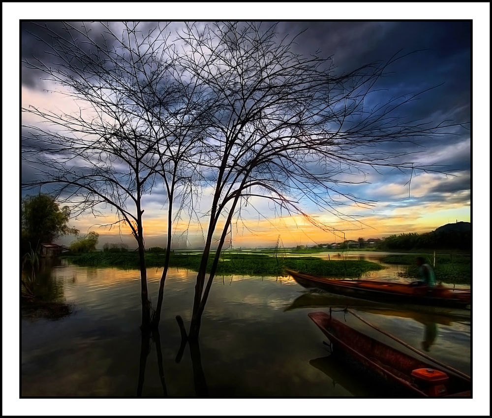 Atmosphere Banca Bare Tree Beauty In Nature Boat Branch Cloud Cloud - Sky Dusk Idyllic Joel Yonzon Landscape_Collection Light Majestic Mystery Nature Outdoors Scenics Silhouette Sky Sunset Tranquil Scene Tranquility