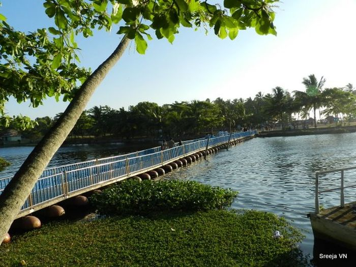 Backwater Bridge Counch Day Nature No People Outdoors Shell Beach Tranquility Travel Travel Destinations