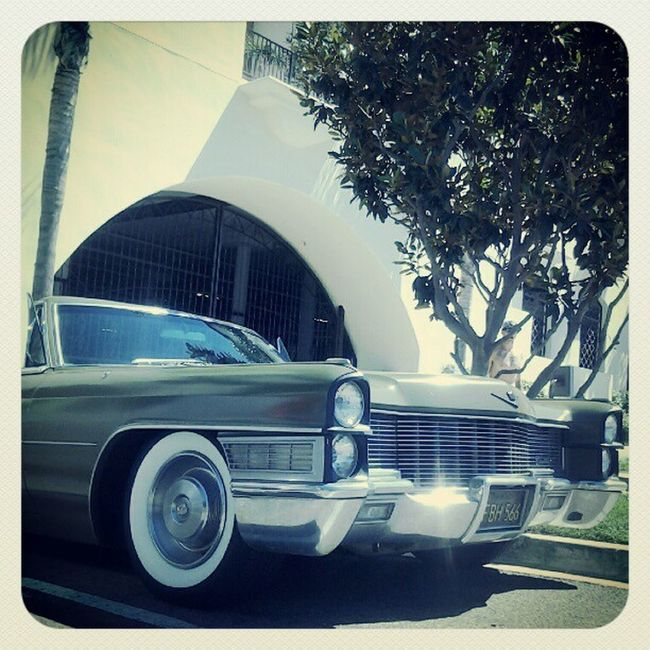 I ran into my lady!!! :D 65caddy Sexy Thehardest Therapehouse 8thst Orangest Hunningtonbeach California DopeAss  Day Fun Lovethatish