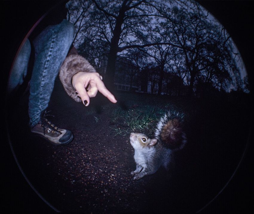 Finger always tastyNature On Your Doorstep Hyde Park London Black Nails Squirrel Well Hello There Hanging Out Wideangle Blitz Flash