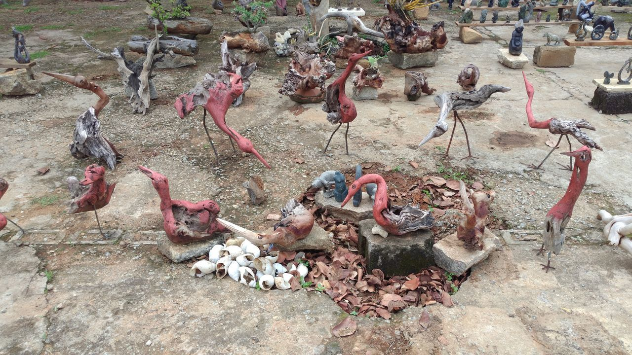This is a collection of Wood Sculpturesi came across outside Domboshava entrance. The level of talent creating the Sculpturesfrom rotting Wood to create Birds Birds_collection. Flamingos Crests can be seen in this Rock Garden and the Snail Shellsused to present a Birds Nestis brilliant. Outdoors ZTE AXON 7 The Purist (no Edit, No Filter) The Real Zimbabwe Finding New Frontiers No People