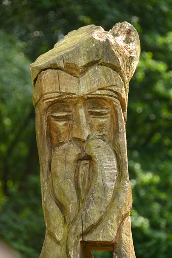A carved staff in the shape of a human head - Sherwood Forest, Nottingham, UK Nottingham Outlaws Sherwood Forest Sherwood Green Carved Staff Close-up Day Focus On Foreground Nature No People Outdoors Robin Hood Sculpture Statue Tree