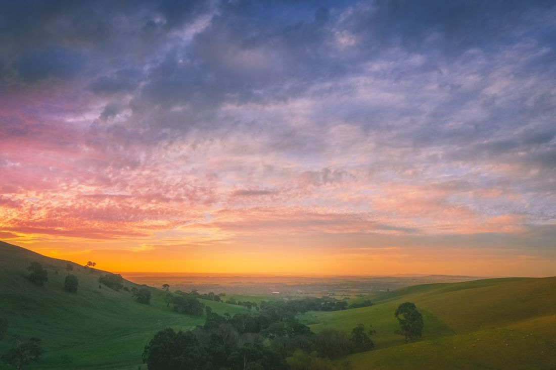 After sunset, the beautiful blue hour starts Sunset Landscape Beauty In Nature Tranquil Scene Scenics Nature Tranquility Sky Field Agriculture Rural Scene Idyllic No People Cloud - Sky Outdoors Day Dusk Sunset On Hill Australia Lifestyle South Australia Barossa Valley Adventure Evening Sky