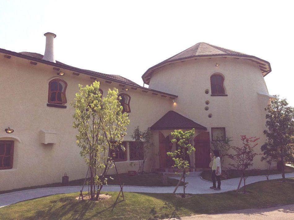 奈良 日本 Nara 大仏プリン Purine House 🍮