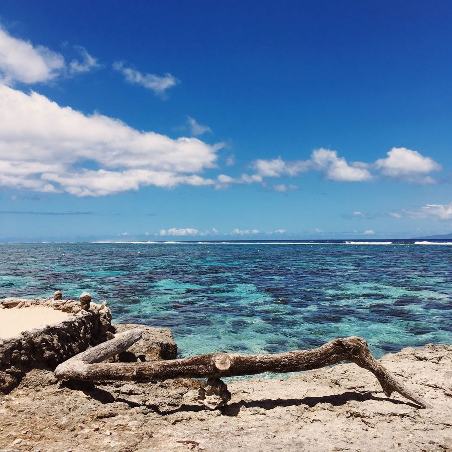 Sea Water Sky Horizon Over Water Nature Scenics Tranquility Blue Beauty In Nature Beach Day No People Outdoors Cloud - Sky LifeIsBetterInTahiti Summer Lagoonarium Moorea Photography Photo Sand FrenchPolynesia Nature Driftwood Moorea