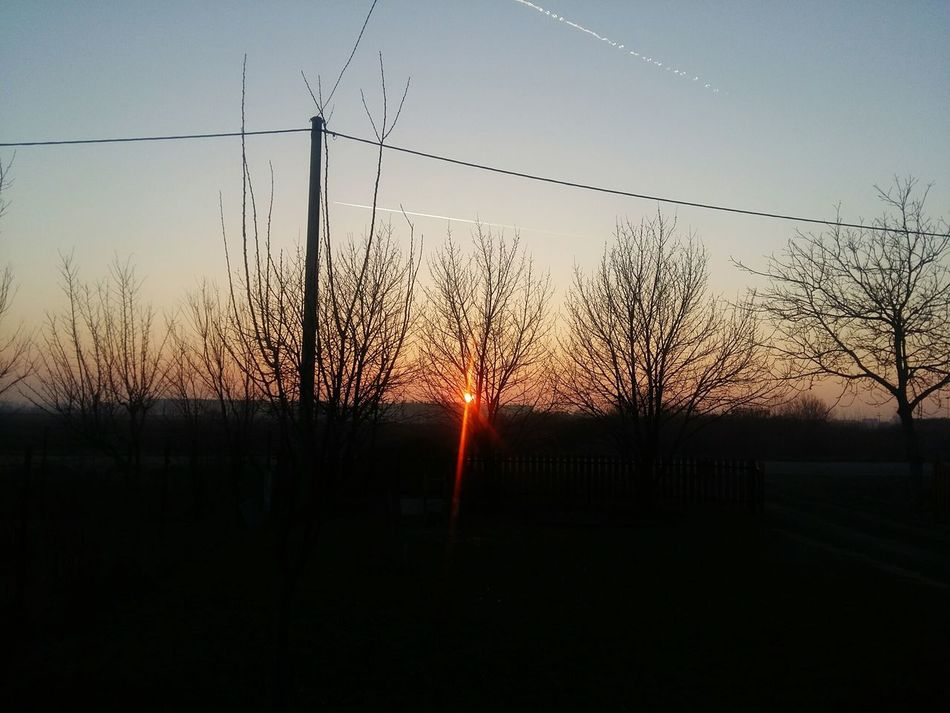 Winter Sunset Trees Slavonski Brod