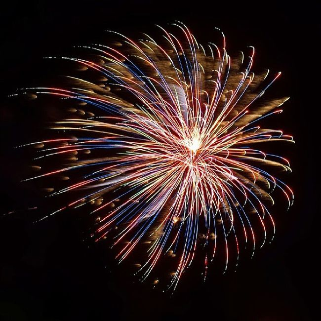 Awesome Fireworks show put on by Winterscalifornia Wintersca . Patriotic Patriotic Flower Bloom Photooftheday Beautiful Pyrotechnic Sky Dark Night Dusk Explosion Explosive Instsgood Love Longexsposure