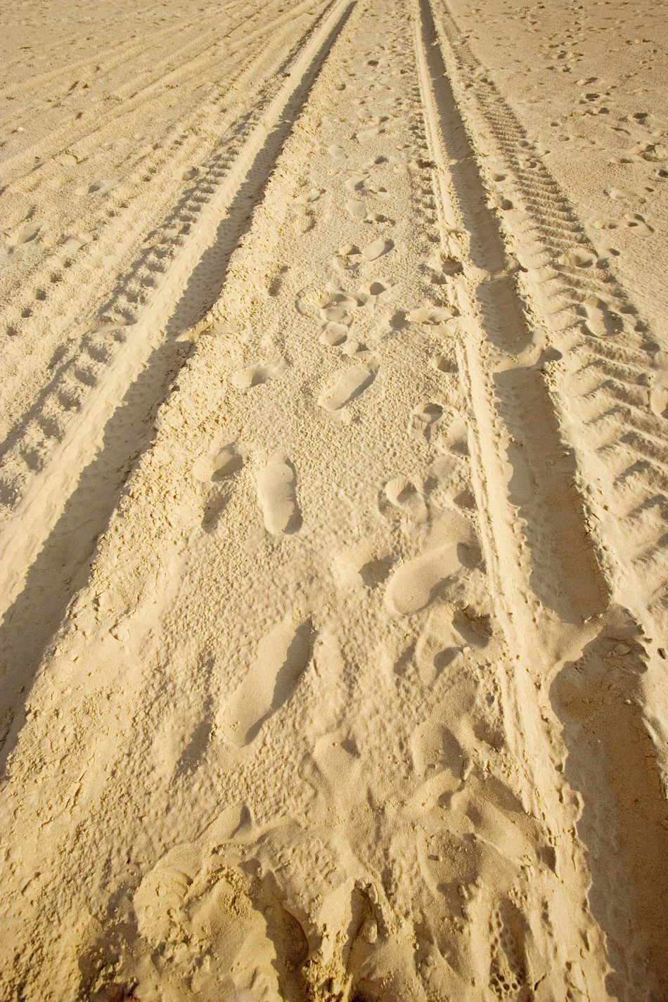 tracks on a sandy beach - in warm sunlight 4x4 Arid Climate Backgrounds Beach Car Car Tracks Desert Diminishing Perspective FootPrint Footprints Full Frame Land Vehicle Nature No People Offroad Sand Sandy Sunlight SUV Tire Traces Track Tracks Transportation Vehicle